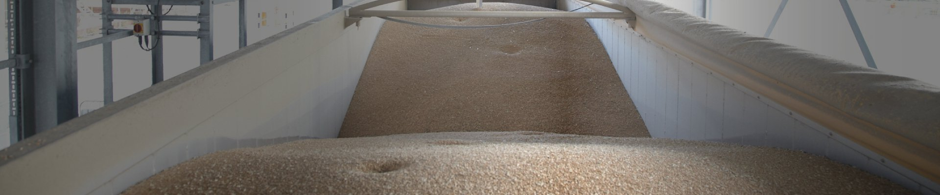 Grain Processing and Storage Banner Image
