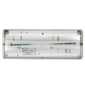 Edwards Series - General-Usage Emergency LED Bulkheads
